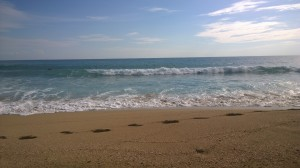that was a beautiful surfing day some weeks ago in Salento